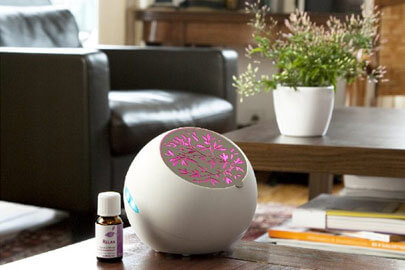 les plantes adorent les diffuseurs humidificateurs
